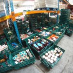 Feeding London with supermarket surplus